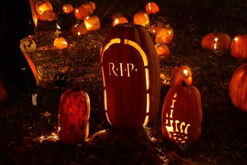 How To Throw A Halloween Party In Your Backyard